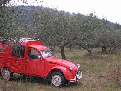 2cv oliviers