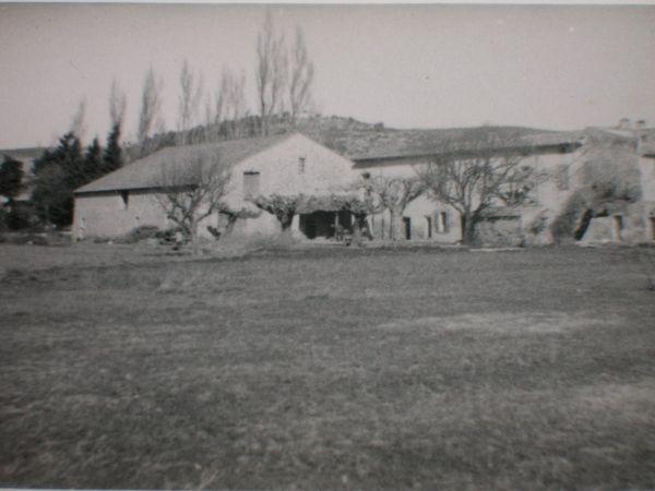 années 50 1
