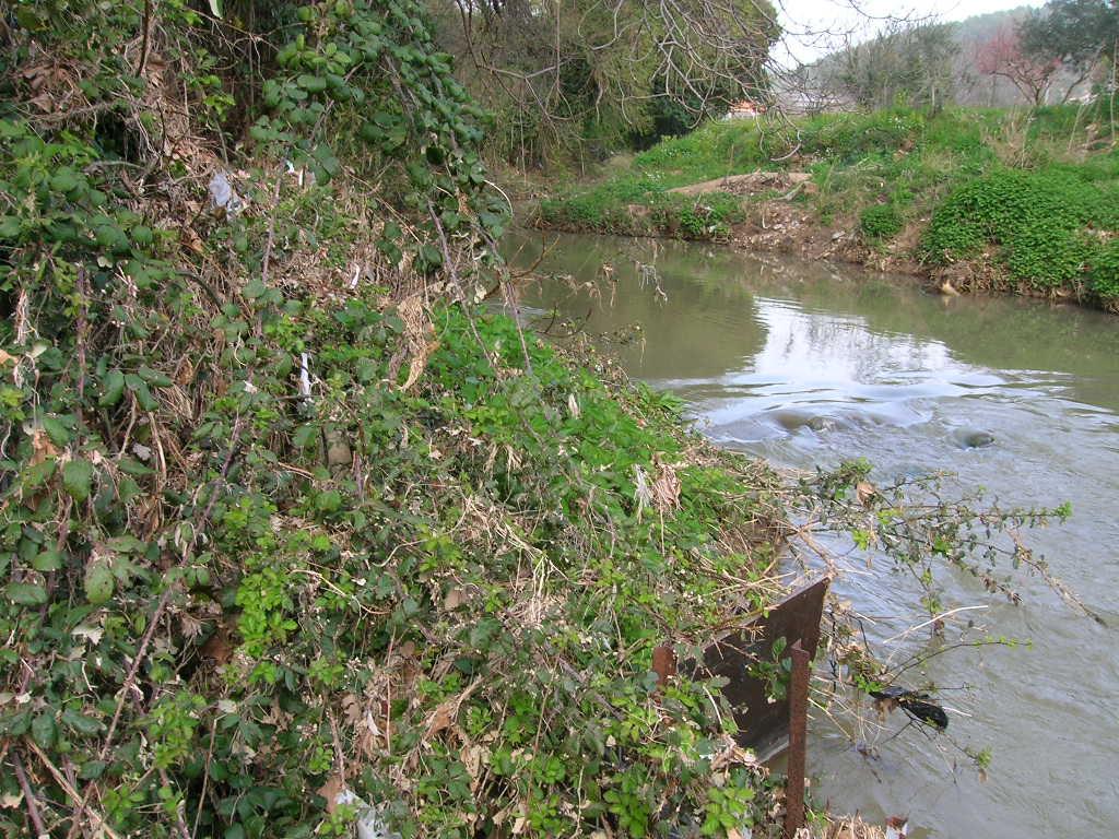 ruisseau 063